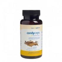 Cordyceps 270 mg Großpackung